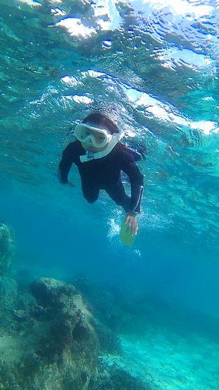 ユキちゃん、余裕の泳ぎです