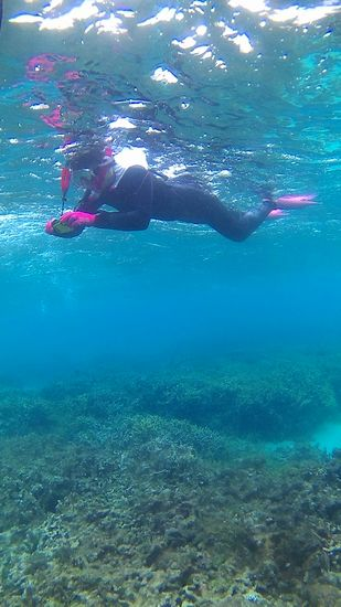 水中カメラに没頭のO越さん