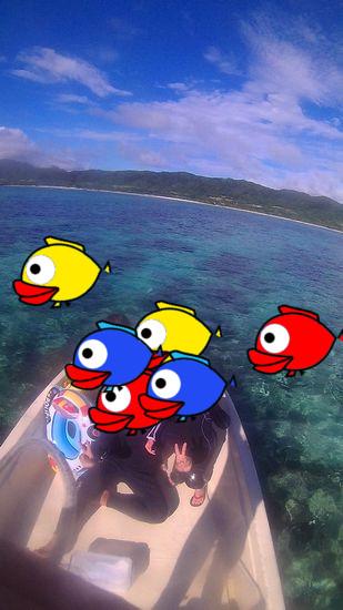 O島さんご家族です