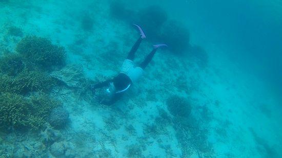 ガツンと潜って水中観察です。