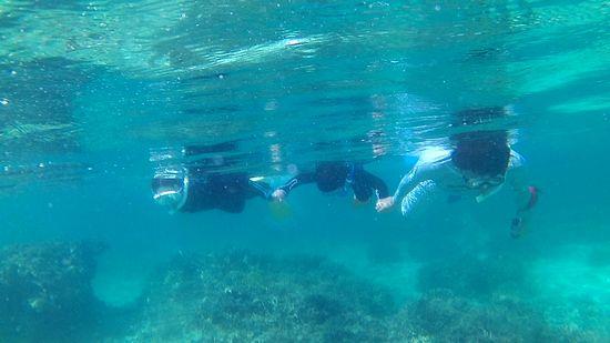 お父さんも一緒に三人で泳いでいます