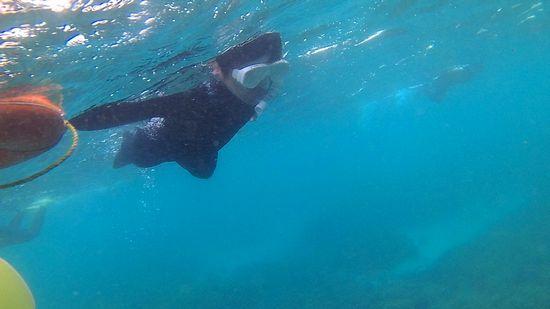 S田さ ん、慣れてくれば水中を楽しみ始めています。