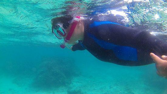 水中世界に没頭です。