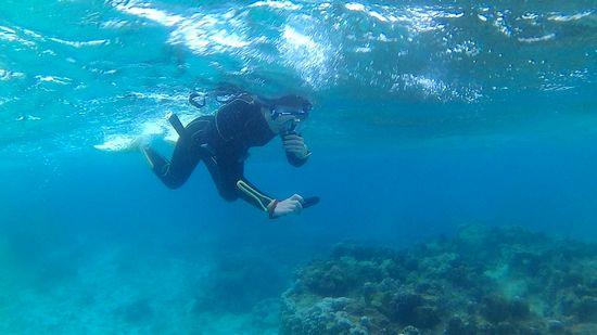 水中カメラの撮影を楽しんでいます。