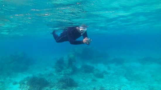 水中カメラを楽しむお父さんです