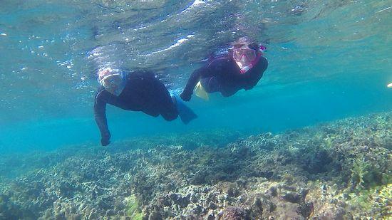 慣れた泳ぎですいすいポイントを回っていきます。