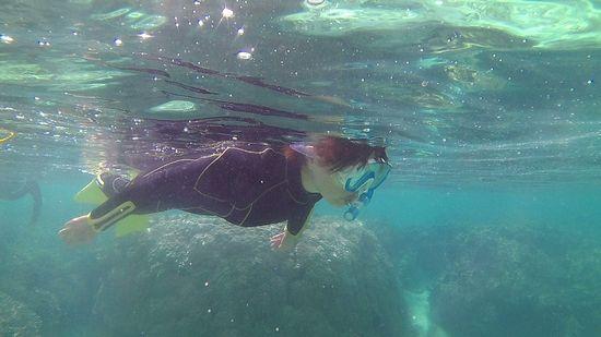 奥さんも水中世界に没頭です。