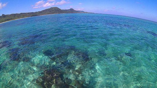 午後からも穏やかな海です。