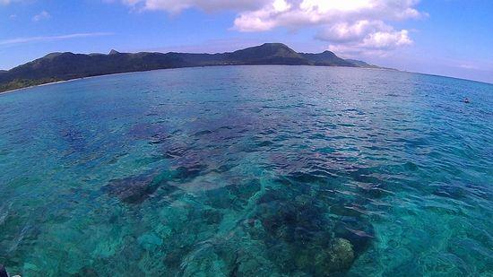 今日も穏やかな海が広がります。