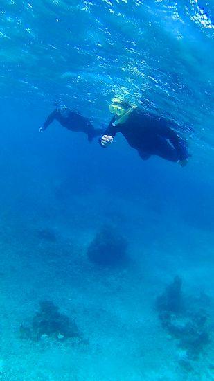 Mさん、水中世界に没頭です♪