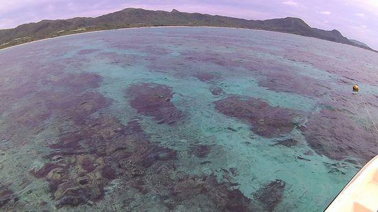 穏やかな海が広がる石垣島です。