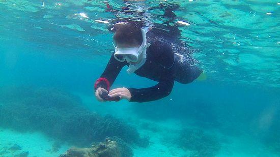 水中カメラに没頭です