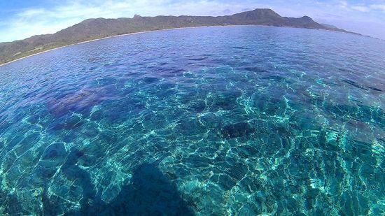 石垣島は今日も絶好調です。