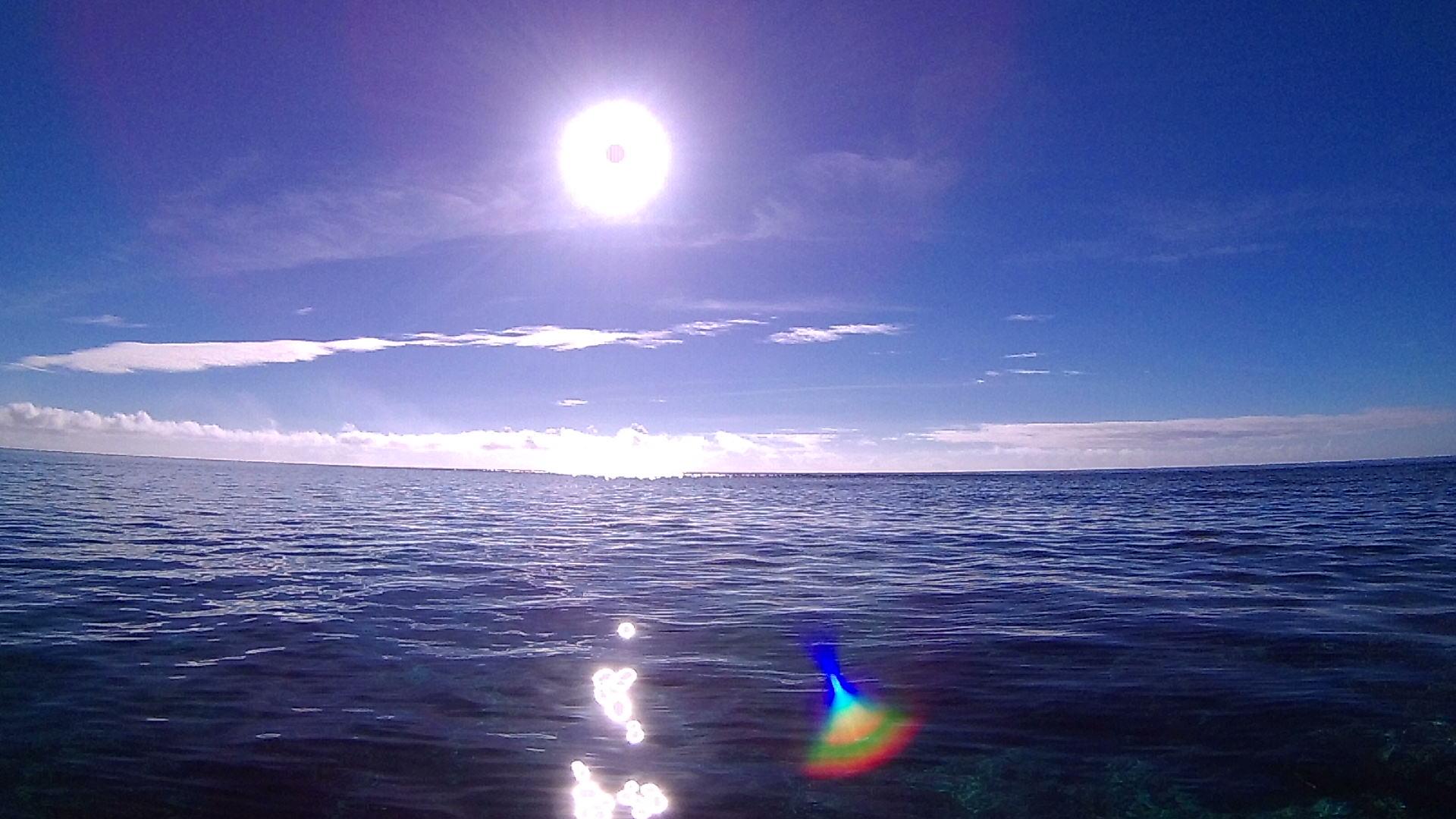 まるで夏のような太陽の石垣島です。
