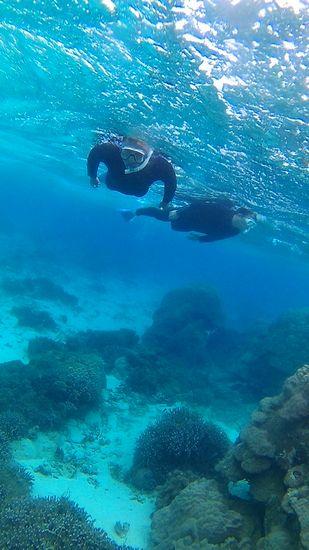 透明度の高い海を楽しんでいきます