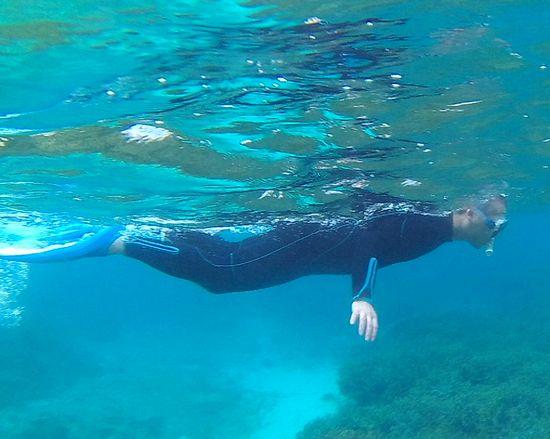 お父さんは、Bダッシュで泳ぎ回っています