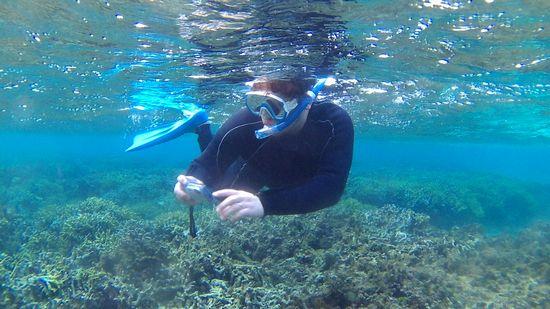 水中カメラで撮影を楽しむ旦那さん
