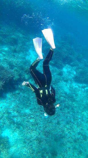 水中世界にドボンのヒナちゃんです