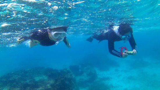 慣れてくれば、水中世界を楽しんでいらっしゃいます
