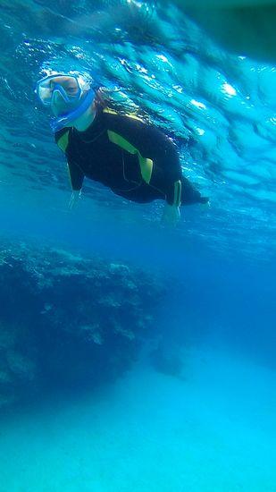 自由に泳ぎ回って楽しんで頂きました