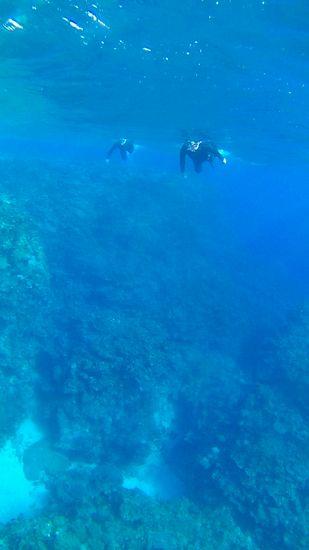 エントリーすると、水深20mです