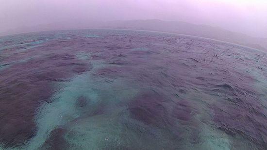 雨の石垣島です