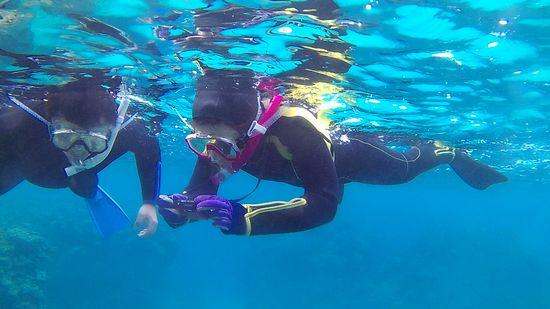 そして水中撮影
