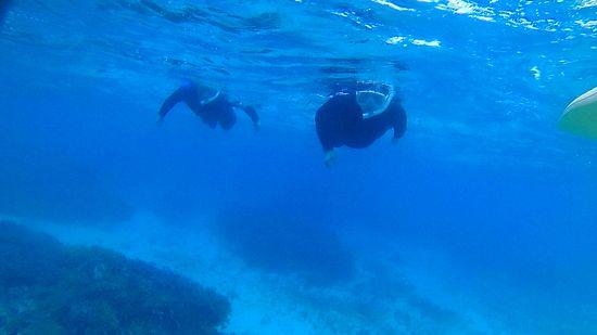 透明度の高い海を楽しんで頂きました