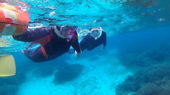 水中世界を楽しみました