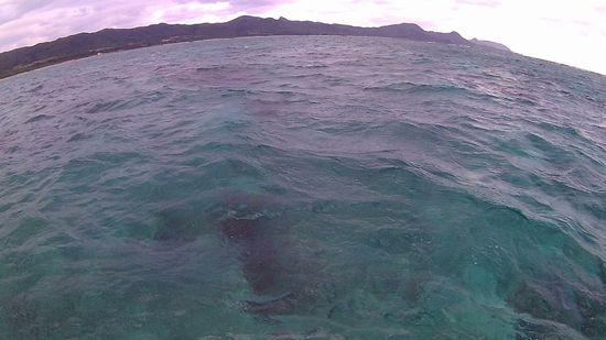 曇りの石垣島です