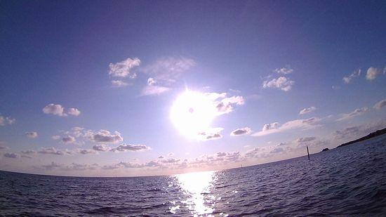 ギラギラ太陽です