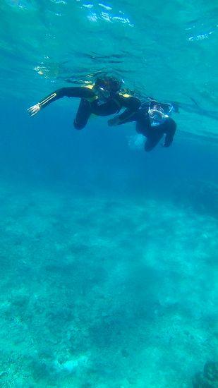 抜群の透明度の中を泳いでいきます。