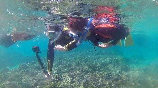 姉妹チーム、水中でしゃべりながら楽しんでいます。