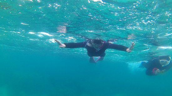 奥さんもゆったり泳ぎ回っています。