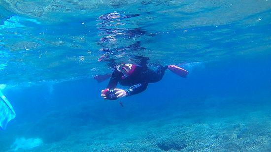 水中カメラを楽しむH原さん