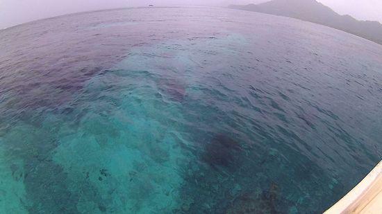 まるで海はプールのように穏やかです