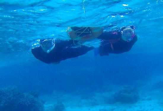 水中世界はパラダイスです