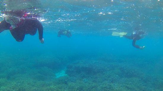 M山さんご家族も泳いでいます。