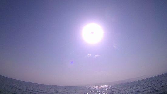 太陽ぎらぎらお出迎えです