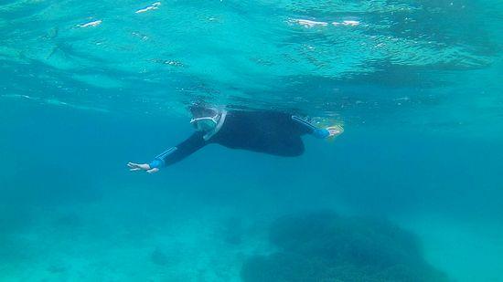お母さん余裕の泳ぎです♪