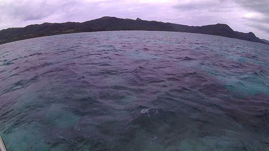 今日は曇りの石垣島です