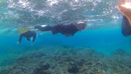 お母さんはストレスフリーの泳ぎです。