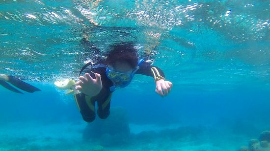 ハルヤ君活発な泳ぎです。