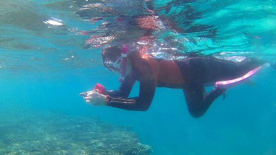 水中カメラを楽しむN岸さん