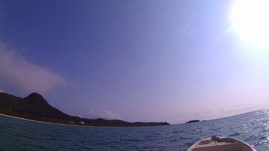 晴れている石垣島ですが、風は強めです