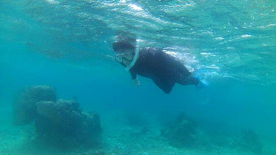 お父さん余裕の泳ぎです。