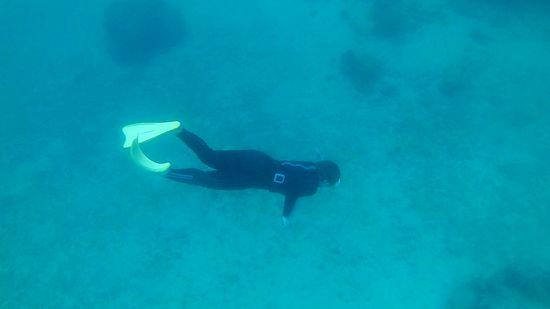 水底に向かってゆったり泳ぐM口さん