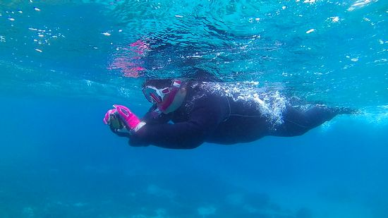 水中写真の撮影を楽しんでいます。