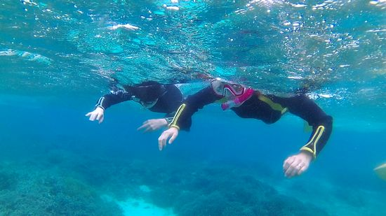 水中世界を楽しんで頂きました