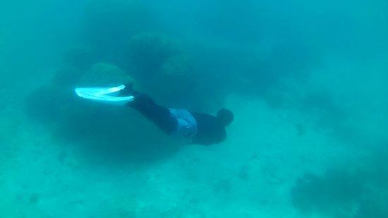水底を楽しむA山さん